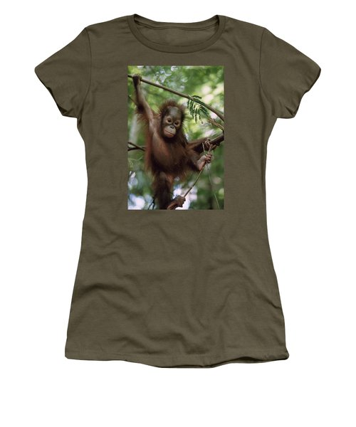 Orangutan Infant Hanging Borneo Women's T-Shirt (Junior Cut) by Konrad Wothe