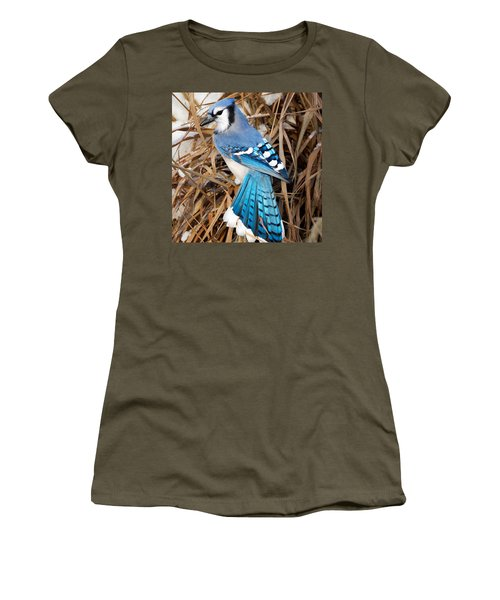 Portrait Of A Blue Jay Square Women's T-Shirt (Junior Cut) by Bill Wakeley