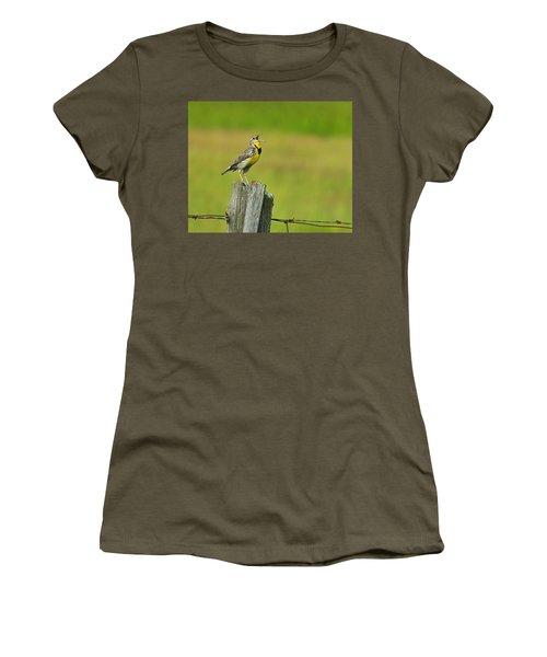 Western Meadowlark Women's T-Shirt (Junior Cut) by Tony Beck