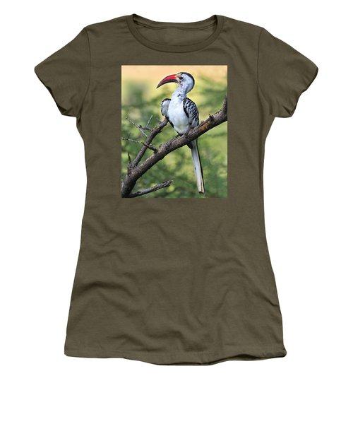 Red-billed Hornbill Women's T-Shirt (Junior Cut) by Tony Beck