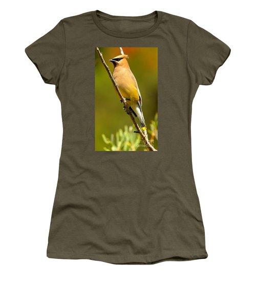 Cedar Waxwing Women's T-Shirt (Junior Cut) by Adam Jewell