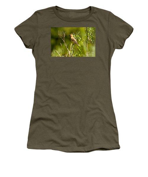 Cedar Waxwing At Glacier Women's T-Shirt (Junior Cut) by Adam Jewell
