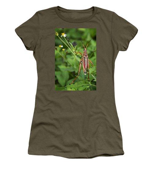 Eastern Lubber Grasshopper  Women's T-Shirt (Junior Cut) by Saija  Lehtonen
