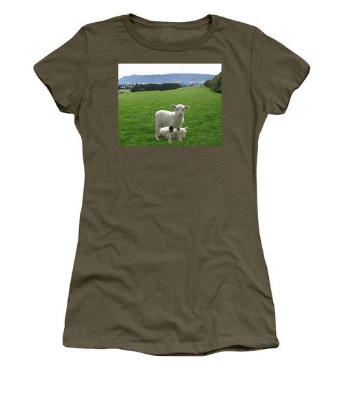 Lambs In Pasture Women's T-Shirt (Junior Cut) by Dominic Yannarella