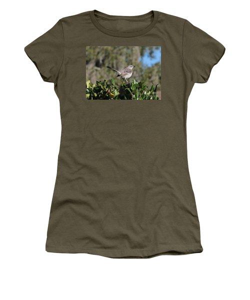 Northern Mockingbird Women's T-Shirt (Junior Cut) by Carol Groenen