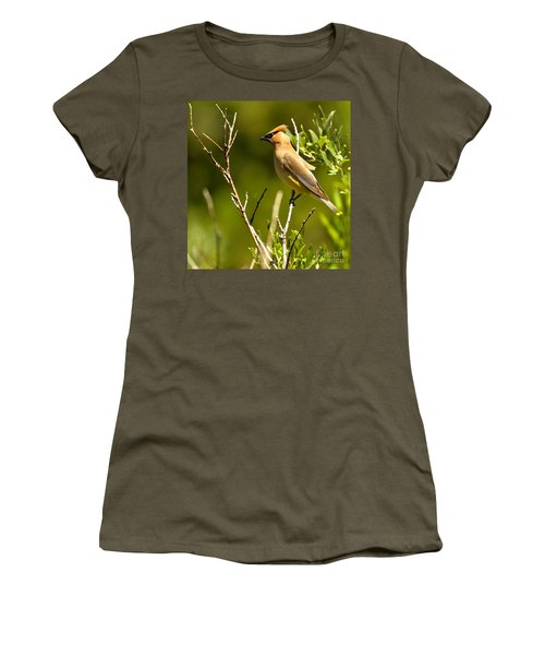 Perfectly Perched Women's T-Shirt (Junior Cut) by Adam Jewell