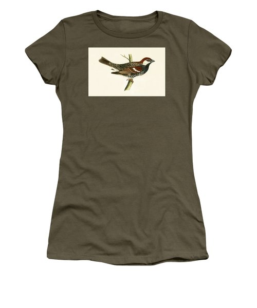 Spanish Sparrow Women's T-Shirt (Junior Cut) by English School