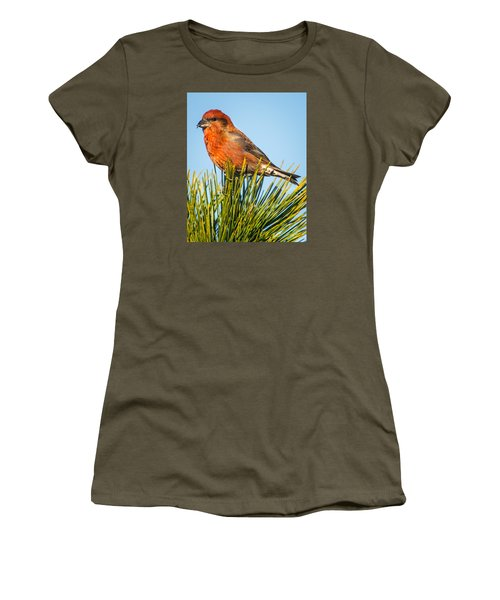 Tree Top Women's T-Shirt (Junior Cut) by John Crookes