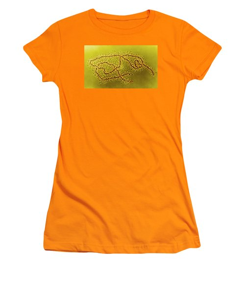 Lampbrush Chromosomes Newt, Lm Women's T-Shirt (Junior Cut) by Science Source