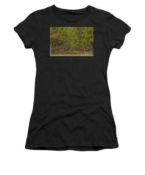 Mango Orchard Women's T-Shirt (Junior Cut) by Douglas Barnard