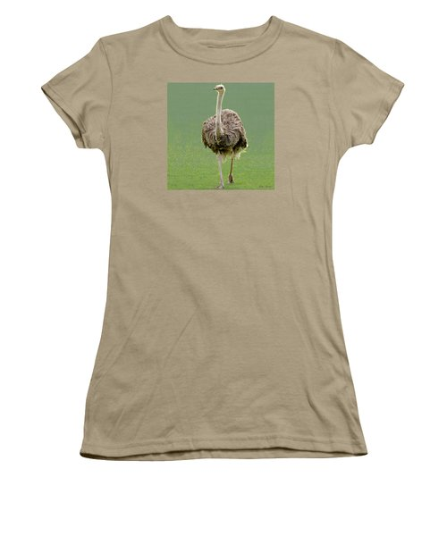 Emu Women's T-Shirt (Junior Cut) by Ellen Henneke