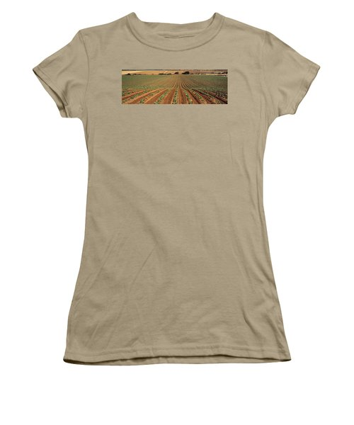 Agriculture - Sloping Field Of Early Women's T-Shirt (Junior Cut) by Timothy Hearsum