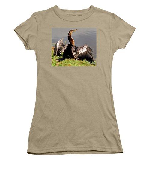 Anhinga Anhinga Anhinga Drying Plumage Women's T-Shirt (Junior Cut) by Millard H. Sharp