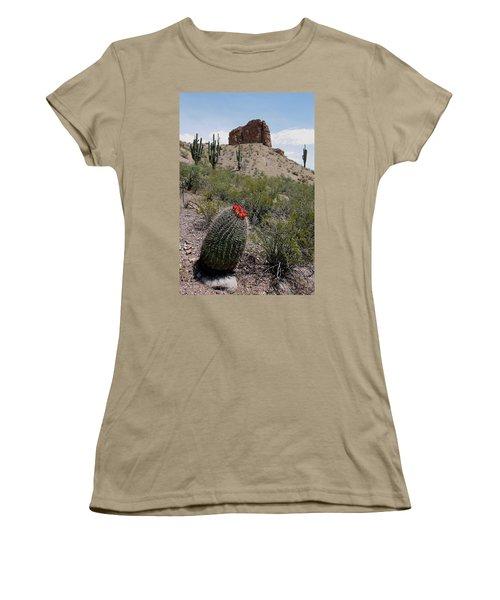 Arizona Icons Women's T-Shirt (Junior Cut) by Joe Kozlowski