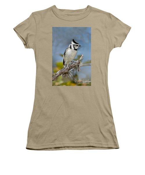 Bridled Titmouse Women's T-Shirt (Junior Cut) by Anthony Mercieca