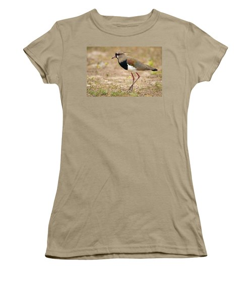 Close-up Of A Southern Lapwing Vanellus Women's T-Shirt (Junior Cut) by Panoramic Images