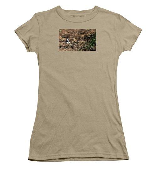 Killdeer Chick Women's T-Shirt (Junior Cut) by Skip Willits