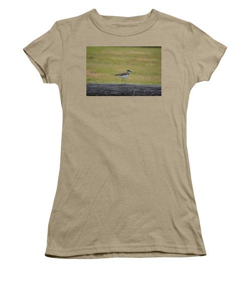Killdeer Women's T-Shirt (Junior Cut) by James Petersen