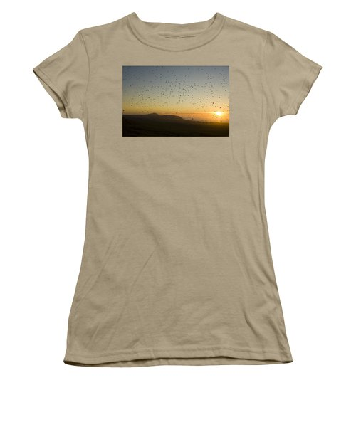 Least Auklets, Returning To Their Nest Women's T-Shirt (Junior Cut) by Brian Guzzetti