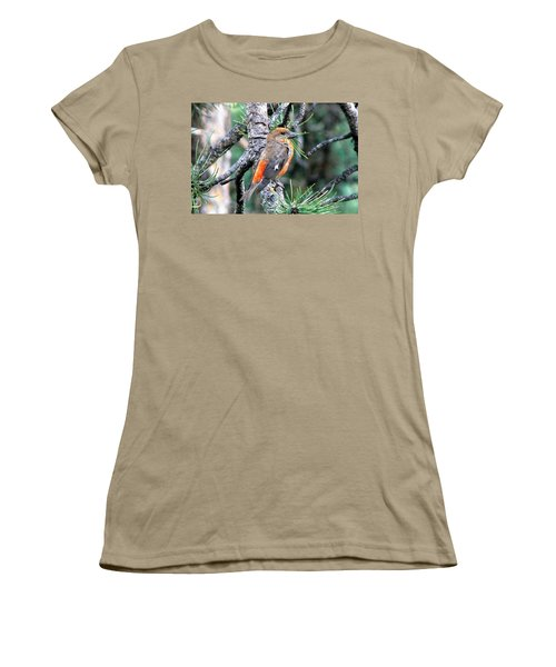 Red Crossbill On Pine Tree Women's T-Shirt (Junior Cut) by Marilyn Burton