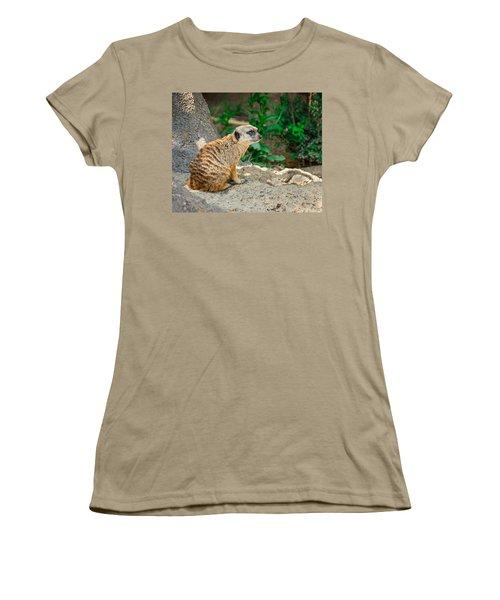Watchful Meerkat Women's T-Shirt (Junior Cut) by Jon Woodhams