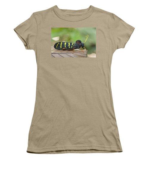 Lubber Grasshopper Guyana Women's T-Shirt (Junior Cut) by Piotr Naskrecki