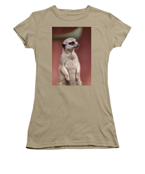 The Sentry Women's T-Shirt (Junior Cut) by Michelle Wrighton