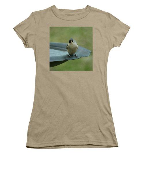 Tufted Titmouse Women's T-Shirt (Junior Cut) by Sandy Keeton