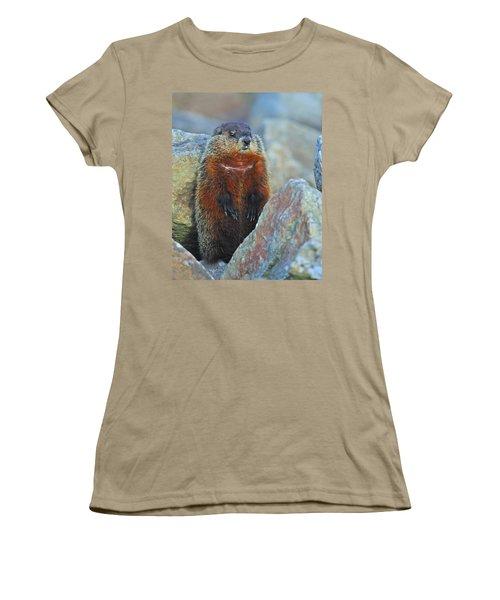 Woodchuck Women's T-Shirt (Junior Cut) by Tony Beck