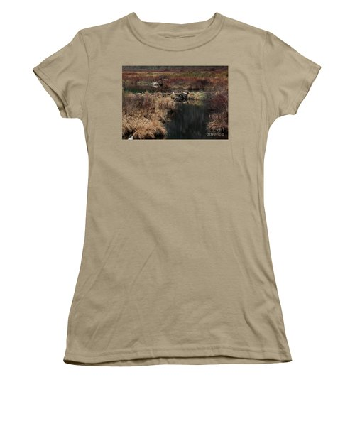 A Beaver's Work Women's T-Shirt (Junior Cut) by Skip Willits