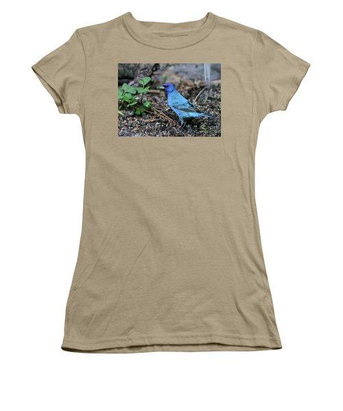 Beautiful Indigo Bunting Women's T-Shirt (Junior Cut) by Sabrina L Ryan