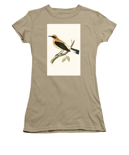 Black Eared Wheatear Women's T-Shirt (Junior Cut) by English School