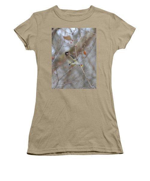 Cedar Wax Wing 2 Women's T-Shirt (Junior Cut) by David Arment