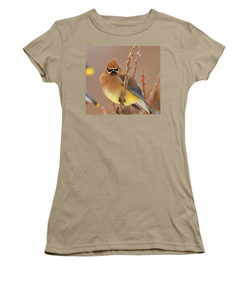 Cedar Wax Wing Women's T-Shirt (Junior Cut) by Carl Shaw
