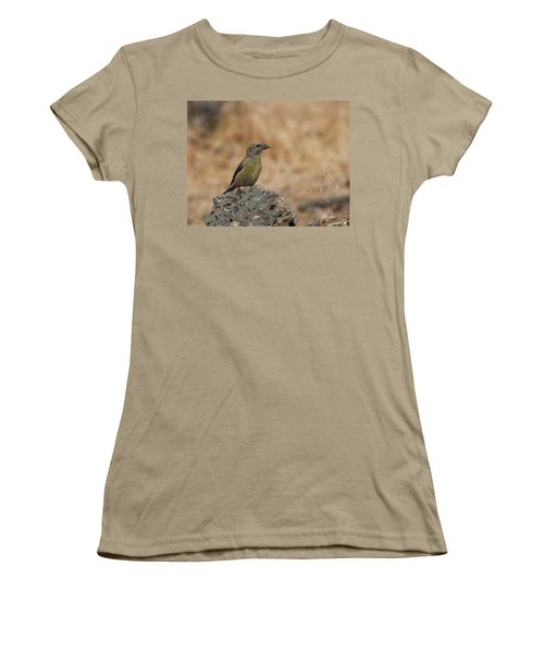 Female Red Crossbill Women's T-Shirt (Junior Cut) by Doug Lloyd