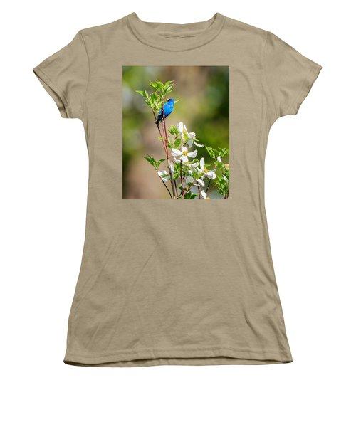 Indigo Bunting In Flowering Dogwood Women's T-Shirt (Junior Cut) by Bill Wakeley