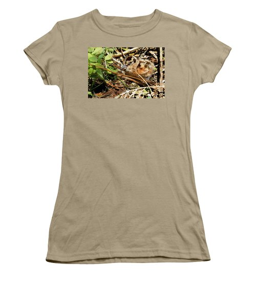 It's A Baby Woodcock Women's T-Shirt (Junior Cut) by Asbed Iskedjian
