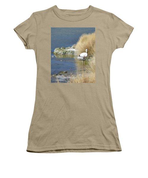 Juvenile Flamingo No. 64 Women's T-Shirt (Junior Cut) by Sandy Taylor