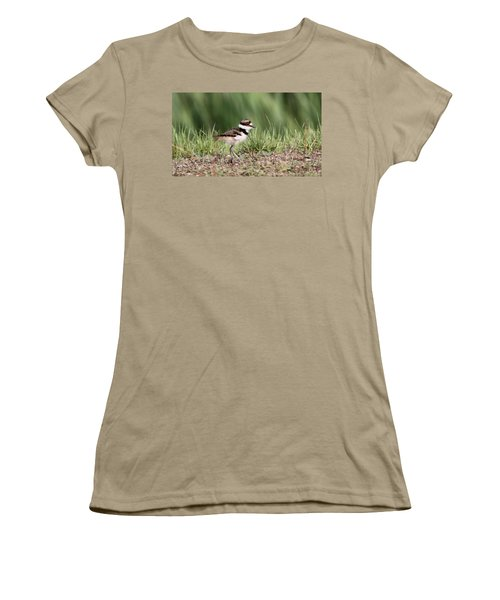 Killdeer - 24 Hours Old Women's T-Shirt (Junior Cut) by Travis Truelove