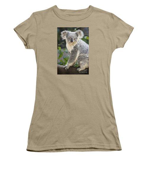 Koala Female Portrait Women's T-Shirt (Junior Cut) by Jamie Pham