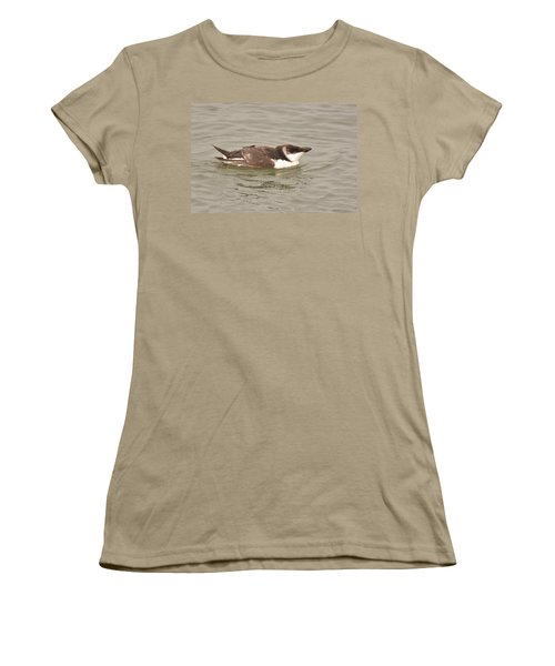Razorbill Women's T-Shirt (Junior Cut) by Alan Lenk