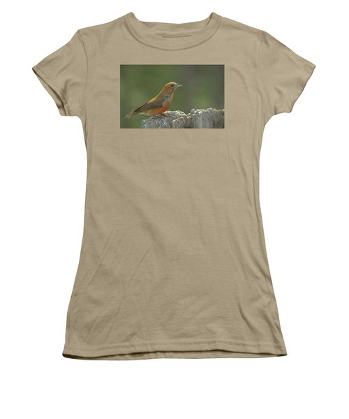 Red Crossbill Women's T-Shirt (Junior Cut) by Constance Puttkemery