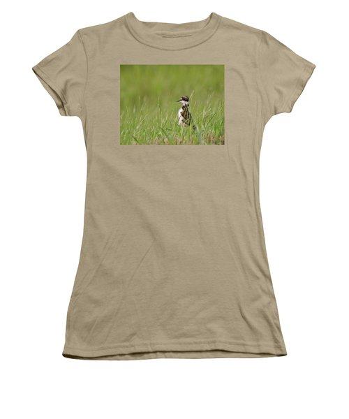Young Killdeer In Grass Women's T-Shirt (Junior Cut) by Mark Duffy