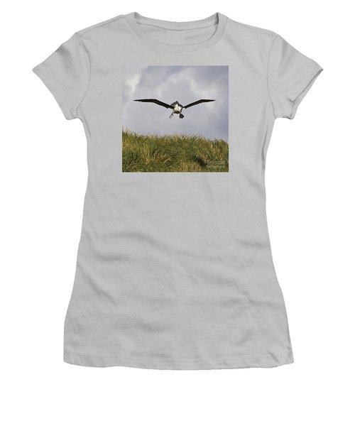 Black-browed Albatross Women's T-Shirt (Junior Cut) by Jean-Louis Klein & Marie-Luce Hubert