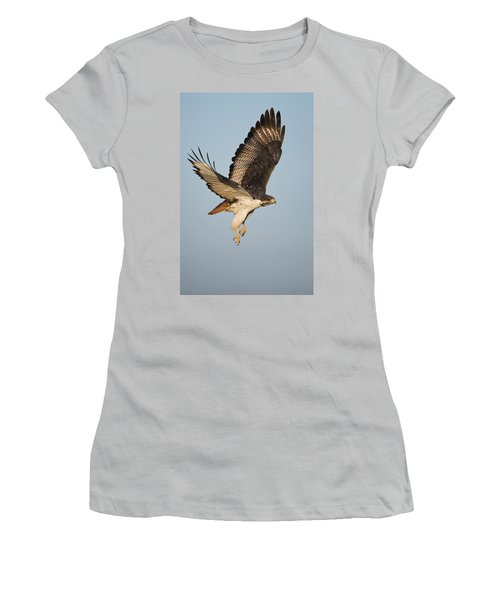 Augur Buzzard Buteo Augur Flying Women's T-Shirt (Junior Cut) by Panoramic Images
