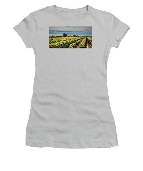 Broccoli Seed Women's T-Shirt (Junior Cut) by Robert Bales