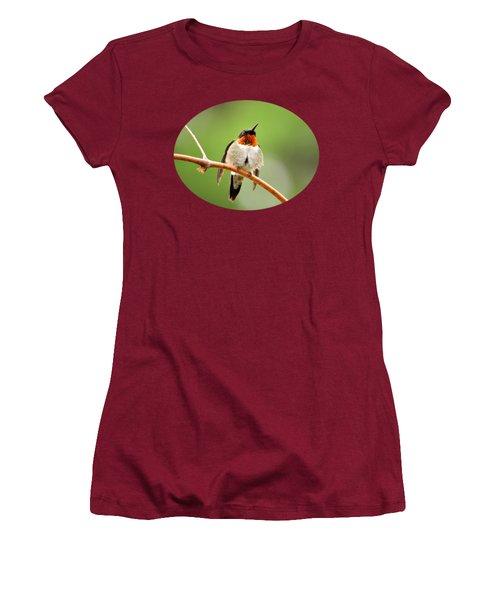 Male Ruby-throated Hummingbird Women's T-Shirt (Junior Cut) by Christina Rollo