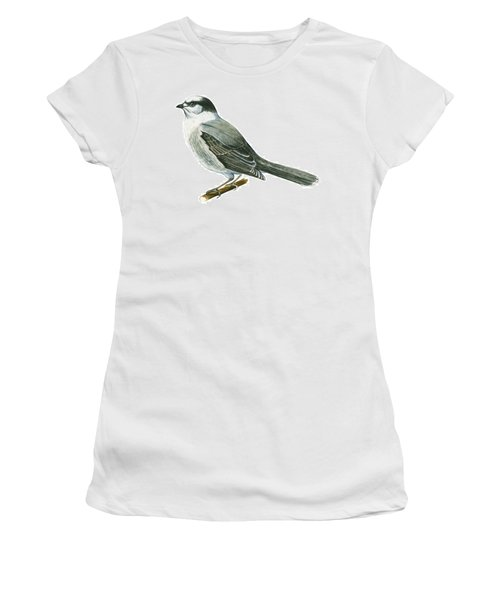 Canada Jay Women's T-Shirt (Junior Cut) by Anonymous