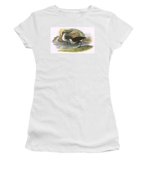 Dunlin Women's T-Shirt (Junior Cut) by English School