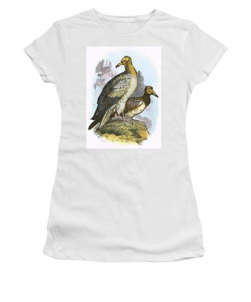 Egyptian Vulture Women's T-Shirt (Junior Cut) by English School